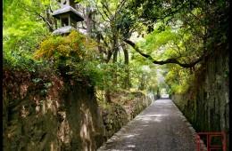 Kosyo-Ji  (The Garden Path)  (A-117)
