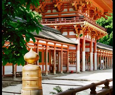 Shimogamo Shrine (ALC-1)