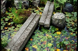Fumon-In  (The Water Lily Pond) (B-100)