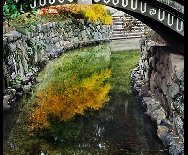 Shimogamo Shrine (The Bridge) (ND-29)