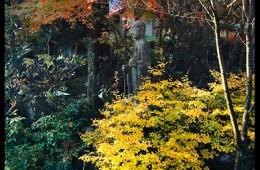 Anraku-ji (ND-57)